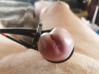 Men (Gay) Precum  closeup