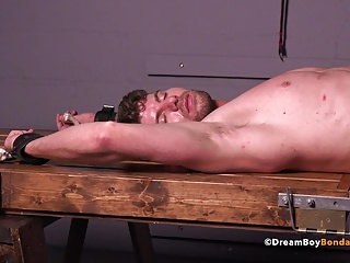 BDSM (Gay);Blowjobs (Gay);Hunks (Gay);Muscle (Gay);Sex Toys (Gay);Dream Boy Bondage (Gay);HD Gays Connor Halsted...