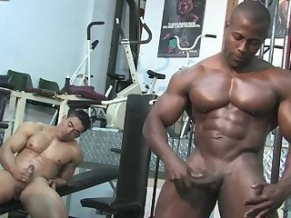 Body Builders,muscled,pro athlete,gay Muscled Hunks...