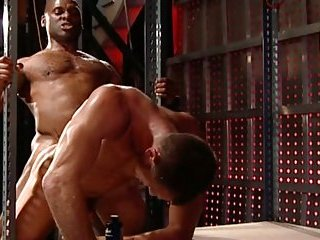 gay Ebony Fucker With...