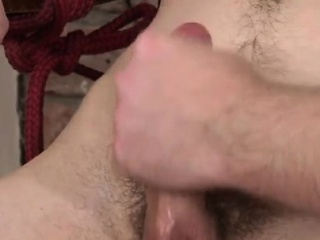 Big Cocks (Gay),Gays (Gay),Handjob (Gay),Twinks (Gay) Chubby mens anal...