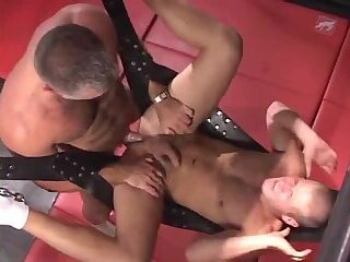 Anal,Big Cock,Bears,Body Builders,Pornstars,Blowjob,gay Massive Muscle Bears