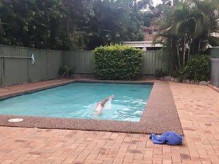 Amateur (Gay);Outdoor (Gay);HD Videos;Gay Swimming (Gay) G String Swim