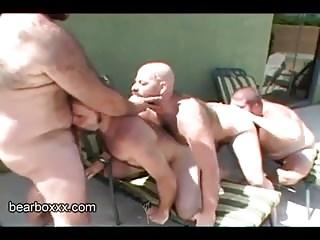 Men (Gay);Gay Porn (Gay);Bears (Gay);Big Cocks (Gay);Daddies (Gay);Bearboxxx (Gay);In Heat Bears in Heat