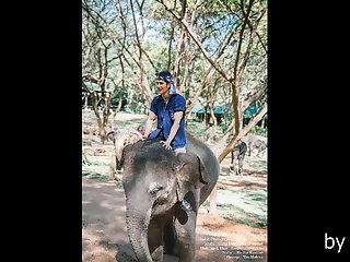 pictures,thai,gay TM02 Gemini9