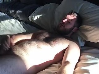 A bear cub this...